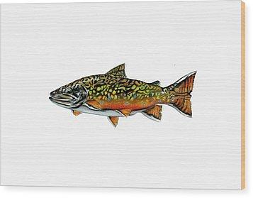 Brook Trout Wood Print by Jim  Romeo