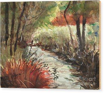 Brookfield Creek #2 Wood Print