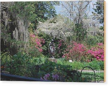 Brookgreen Gardens 2 Wood Print by Gordon Mooneyhan