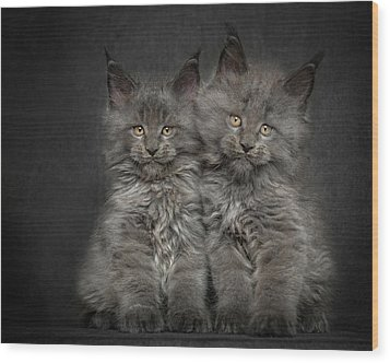 Brother And Sister  Wood Print by Robert Sijka