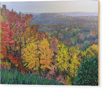 Brown County Vista Wood Print by Stan Hamilton