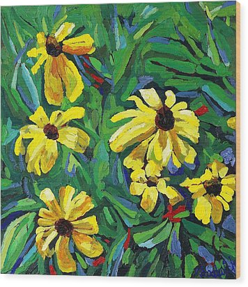 Brown-eyed Susans Wood Print by Phil Chadwick
