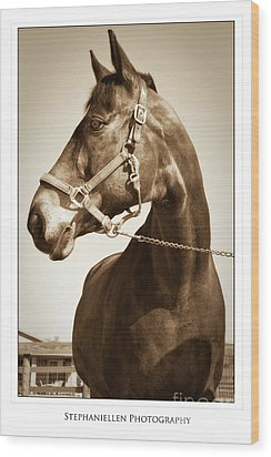 Brown Horse Wood Print