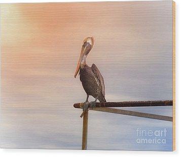 Brown Pelican Sunset Wood Print by Robert Frederick