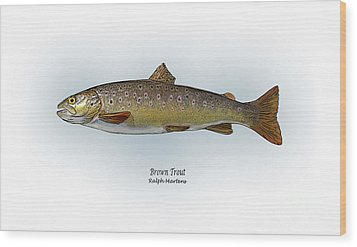 Brown Trout Wood Print by Ralph Martens