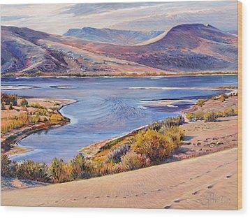 Bruneau Sand Dunes Wood Print by Steve Spencer