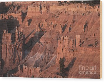 Bryce Canyon At The Golden Hour Wood Print by Stan and Anne Foster
