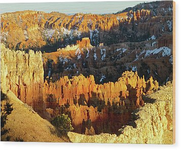 Bryce Canyon Hoodoos Evening Wood Print by Amelia Racca