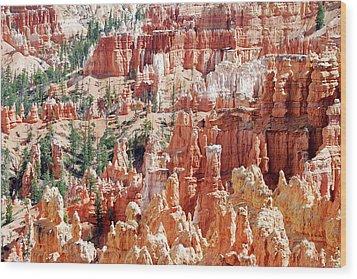 Bryce Canyon Hoodoos Wood Print by Nancy Landry