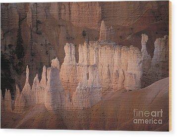 Bryce Canyon Hoodoos Wood Print by Sandra Bronstein