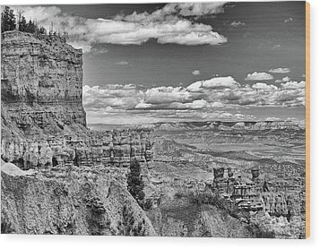 Bryce Canyon In Black And White Wood Print by Nancy Landry