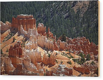 Bryce Canyon  Wood Print by Jane Rix