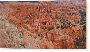 Bryce Canyon Megapixels Wood Print