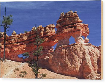 Wood Print featuring the photograph Bryce Canyon National Park by Sally Weigand