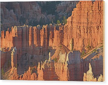 Wood Print featuring the photograph Bryce Canyon Sunrise 2016c by Bruce Gourley