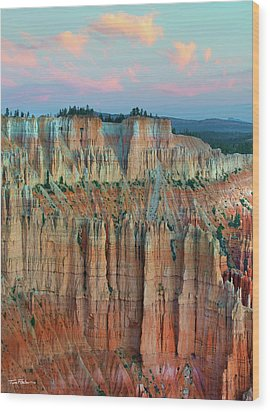 Bryce Canyon Wood Print by Tim Fitzharris