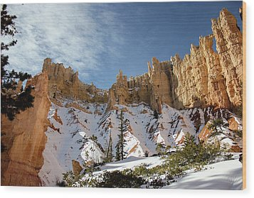 Bryce Towers Wood Print
