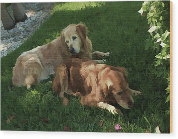 Bubba And Casey Wood Print by Carol Kinkead