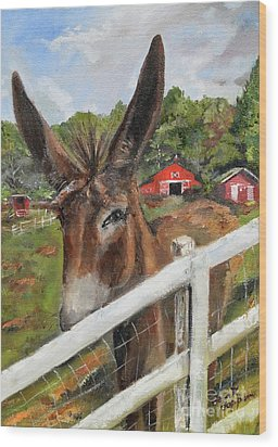 Wood Print featuring the painting Bubba - Steals The Show -donkey by Jan Dappen