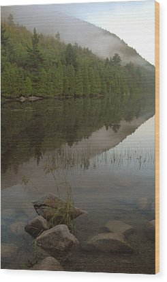 Wood Print featuring the photograph Bubble Pond Reflections by Stephen  Vecchiotti