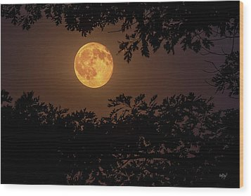 Wood Print featuring the photograph Buck Moon 2016 by Everet Regal