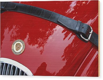 Wood Print featuring the photograph Buckle Up by John Schneider