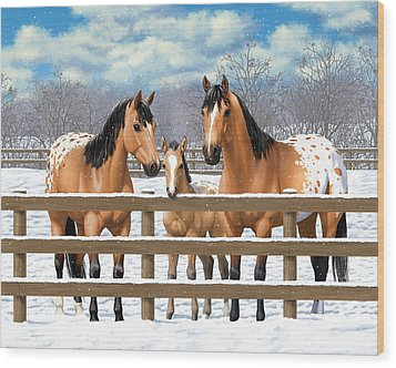 Buckskin Appaloosa Horses In Snow Wood Print by Crista Forest