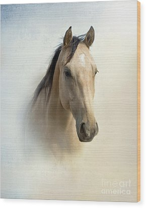 Buckskin Beauty Wood Print by Betty LaRue