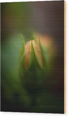 Bud Wood Print by Vicki Ferrari