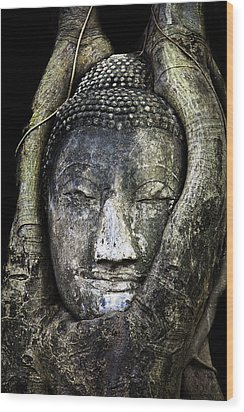 Buddha Head In Banyan Tree Wood Print by Adrian Evans
