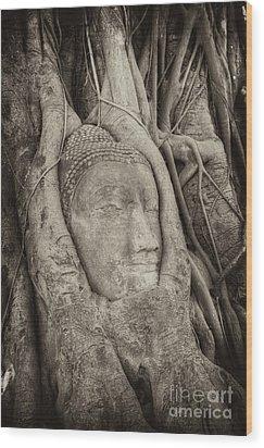 Buddha Head In Tree Wood Print by Fototrav Print