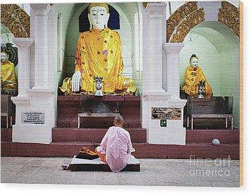Buddhist Nun At Shwedagon Pagoda Wood Print by Dean Harte