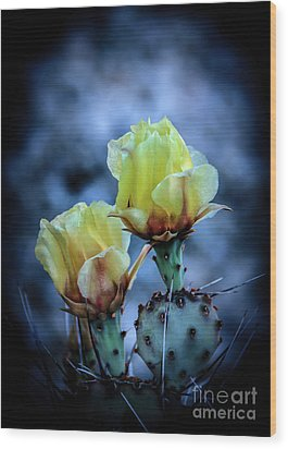 Wood Print featuring the photograph Budding Prickly Pear Cactus by Robert Bales