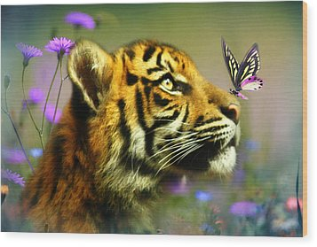 Buddy And The Butterfly Wood Print