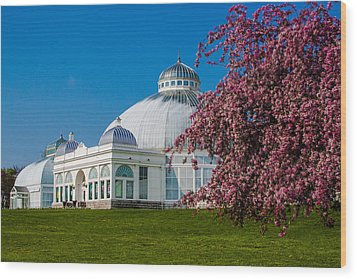 Wood Print featuring the photograph Buffalo Botanical Gardens North Lawns by Don Nieman