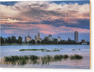 Buffalo From The Breakwall Wood Print by Don Nieman