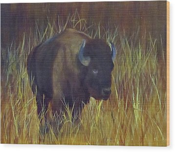 Buffalo Grazing Wood Print by Roseann Gilmore