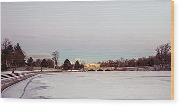 Wood Print featuring the photograph Buffalo History Museum Across Hoyt Lake by Chris Bordeleau