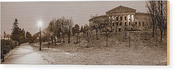 Wood Print featuring the photograph Buffalo History Museum Winter Twilight  by Chris Bordeleau