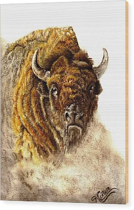 Buffalo Wood Print by Karen Cortese