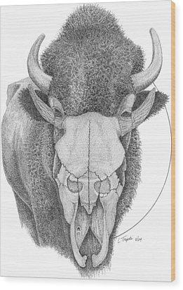 Buffalo Wood Print by Lawrence Tripoli