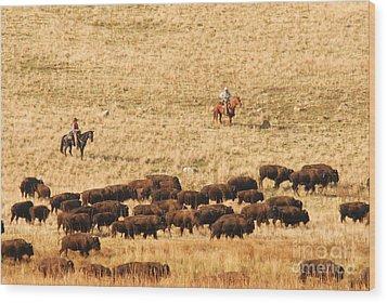 Buffalo Roundup Wood Print by Dennis Hammer