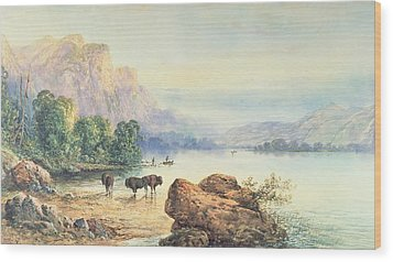 Buffalo Watering Wood Print