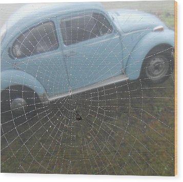 Bug In A Web Wood Print