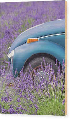 Wood Print featuring the photograph Bug In Lavender Field by Patricia Davidson