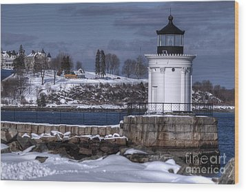 Bug Light In Winter Wood Print