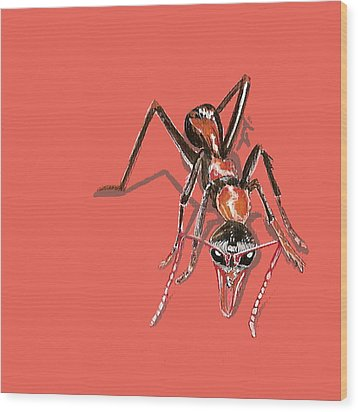 Wood Print featuring the painting Bull Ant by Jude Labuszewski