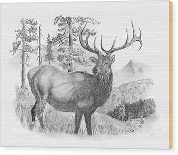 Bull Elk Wood Print by Russ  Smith