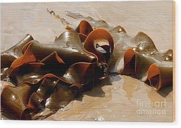 Bull Kelp Wood Print
