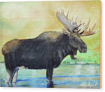 Bull Moose In Mid Stream Wood Print